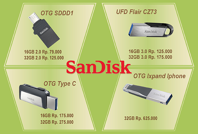 Sandisk OTG iPhone Eextend 2018